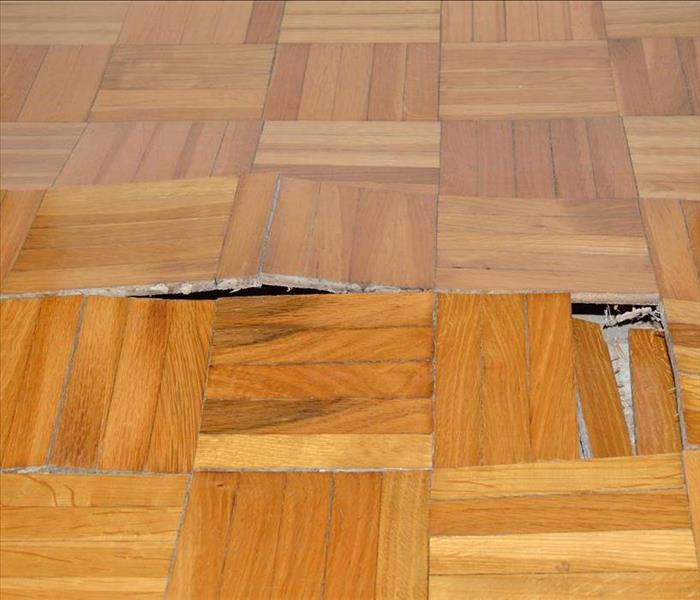 Bloated wood floor