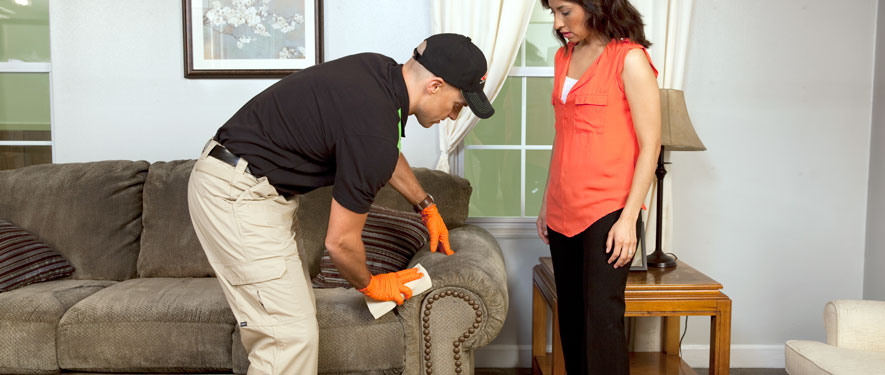 South Oceanside, CA carpet upholstery cleaning